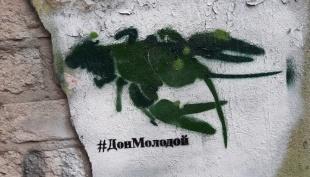 В Ростове сегодня рисовали на стенах